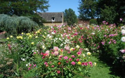 The gardens of the manor of Eyrgnac : appointment for 2017