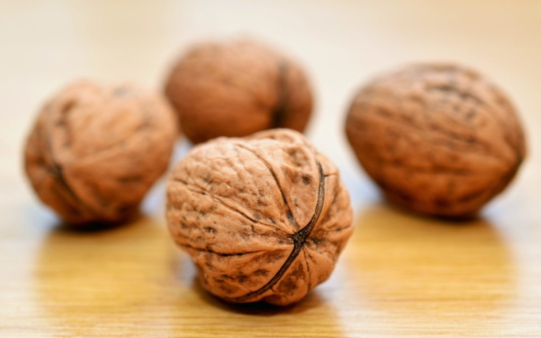 A special cake recipe from Perigord: How to be nuts about Walnuts!